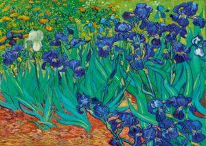 Vincent van Gogh Iris (Schwertlilien)
